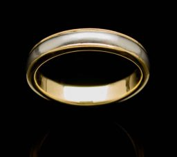 Stainless Steel Ring with Silver Inlay (RS32-sil-sm)
